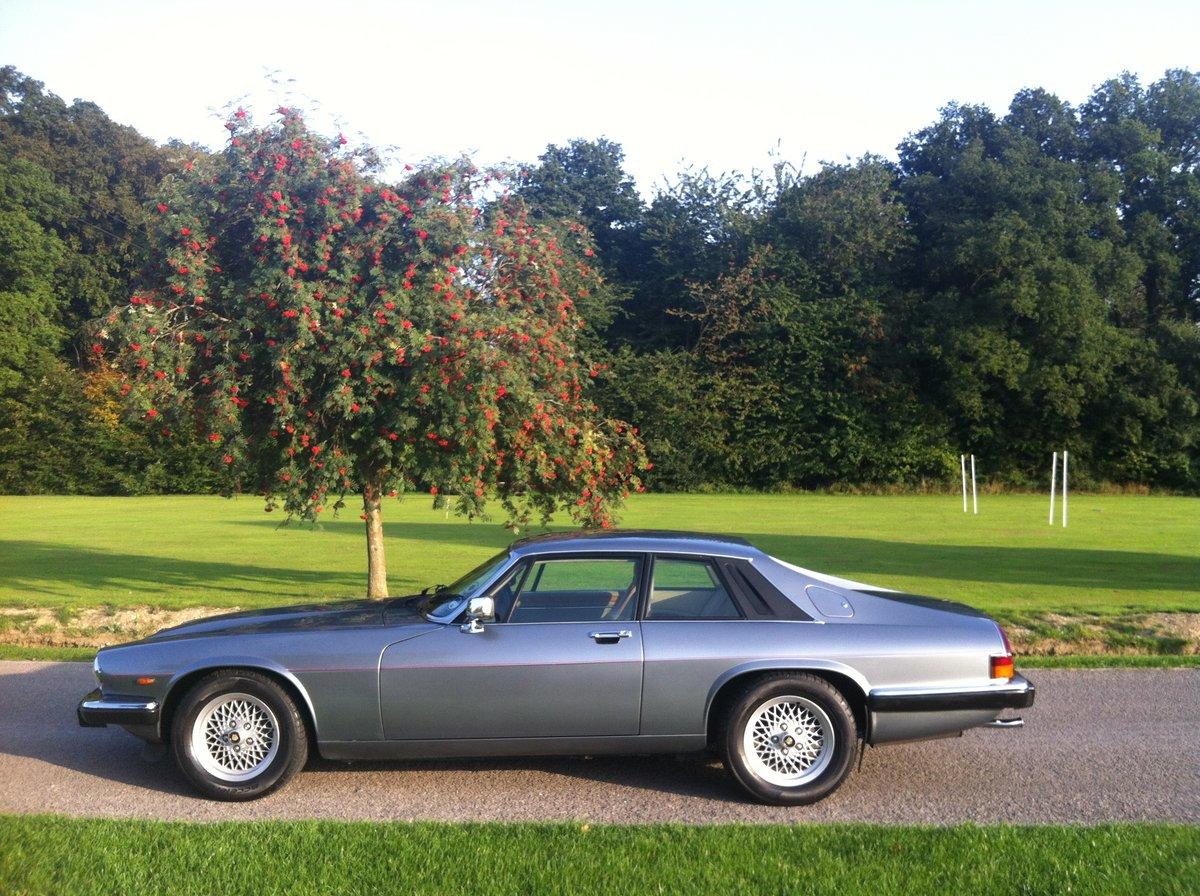 1990 Jaguar XJS 3.6 Auto Mint  SOLD (picture 1 of 6)