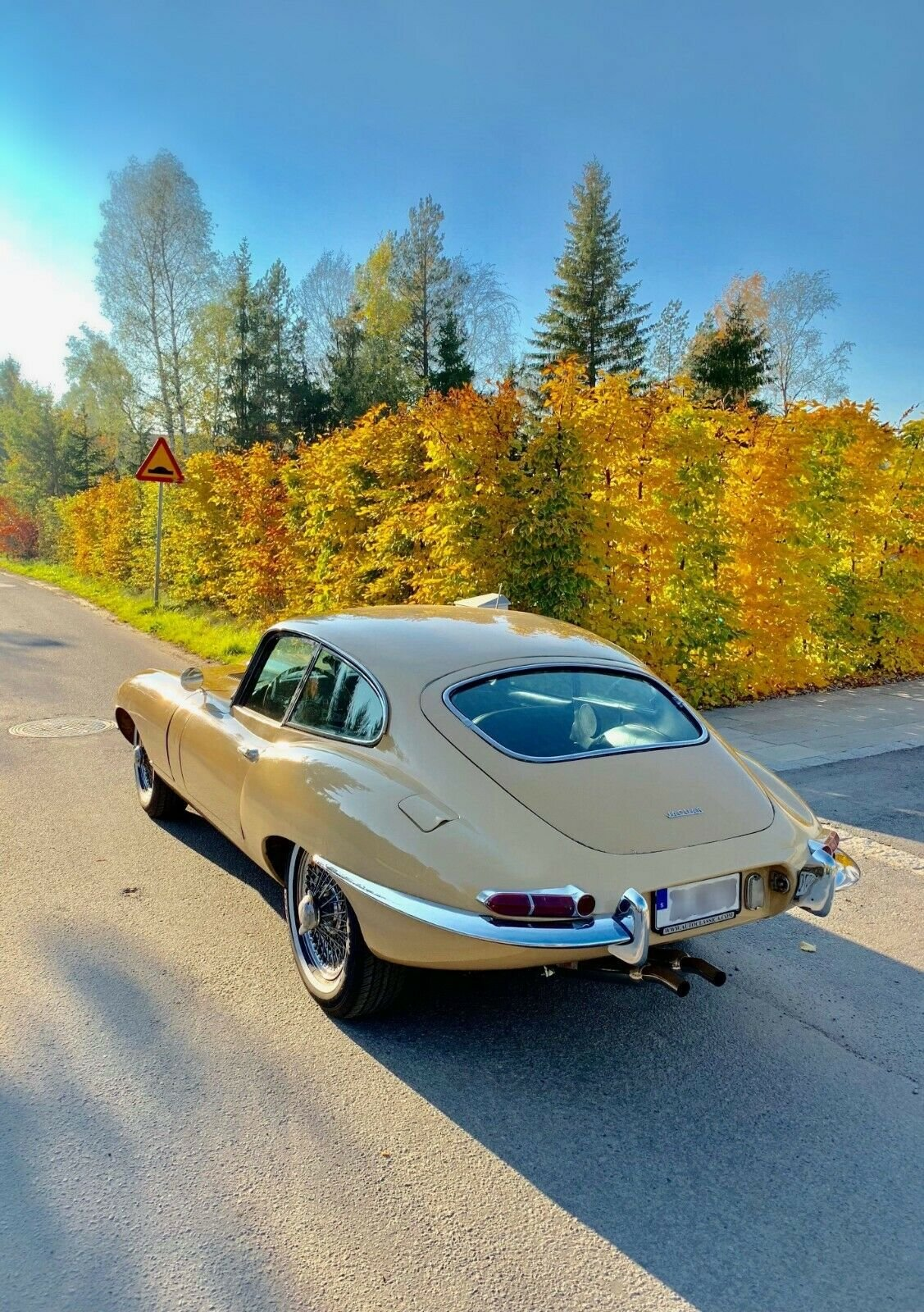 1962 Jaguar E-Type Serie 1 FHC , Great Car! For Sale (picture 3 of 6)