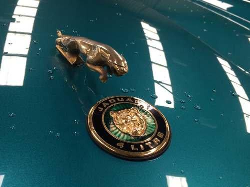 1996 Jaguar XJ-S at Morris Leslie Auction 17th August SOLD by Auction (picture 3 of 6)
