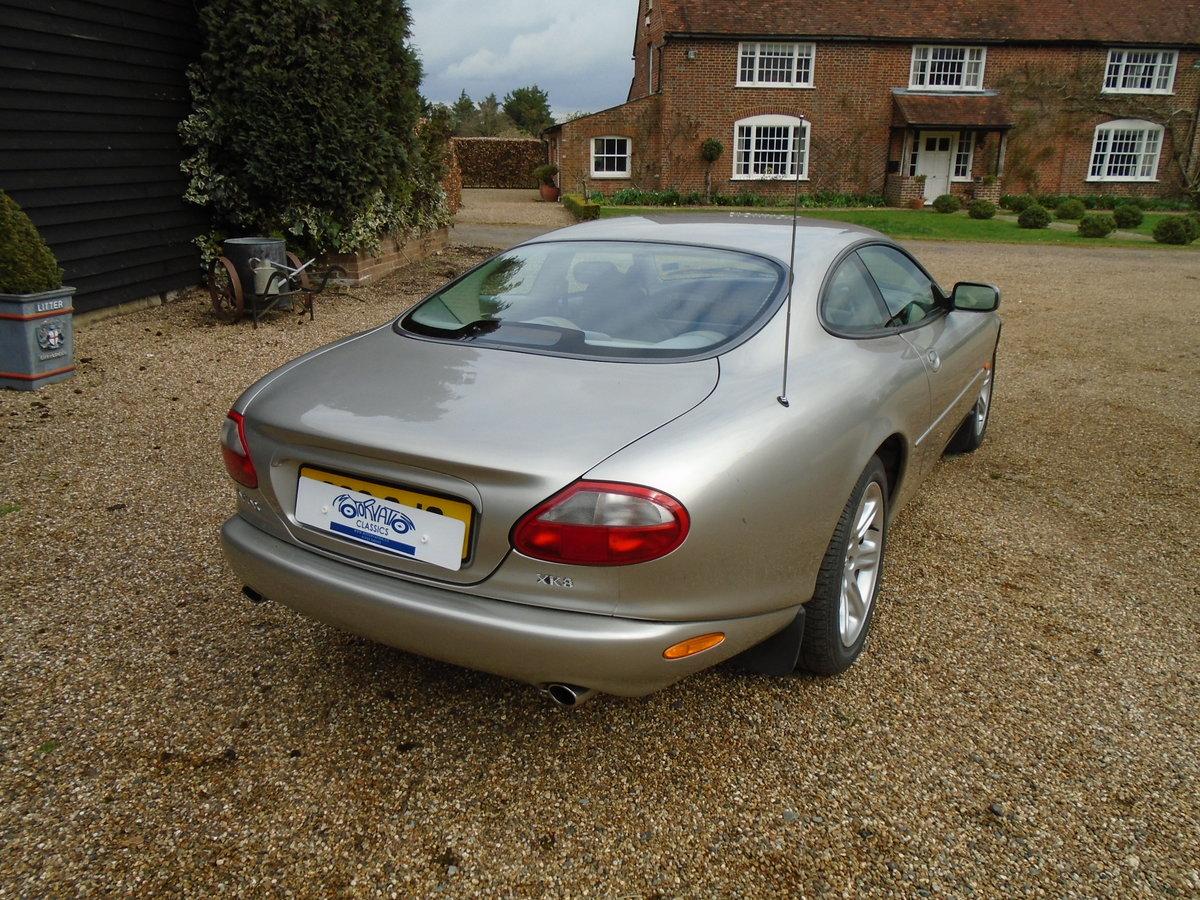 1998 Jaguar XK8 4.0 Auto, superb, FSH, 57k. (S) reg For Sale (picture 3 of 6)