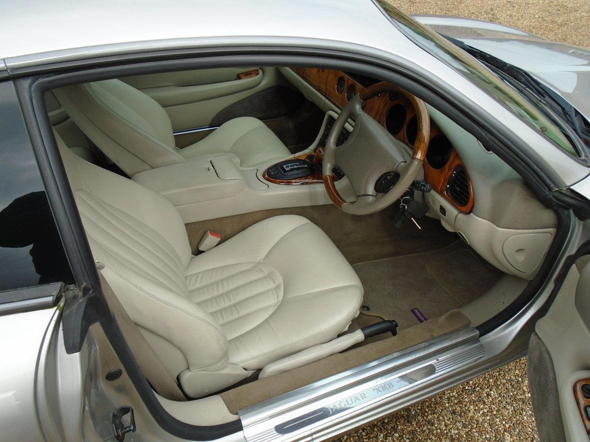 1998 Jaguar XK8 4.0 Auto, superb, FSH, 57k. (S) reg For Sale (picture 4 of 6)