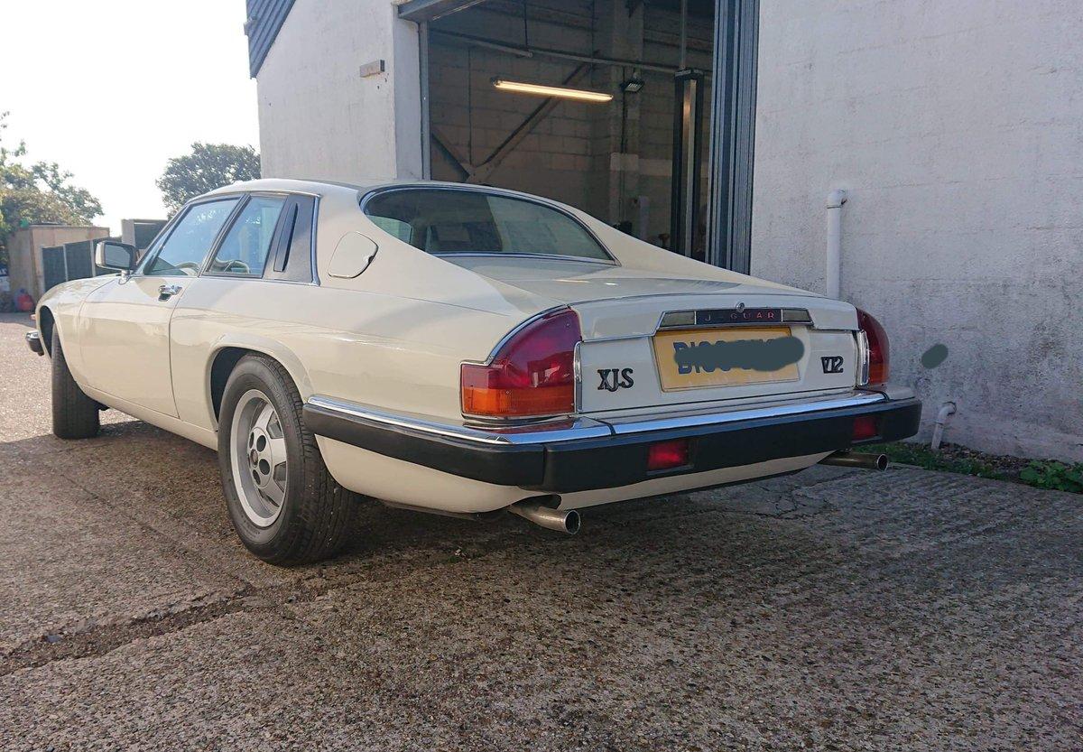 1987 Jaguar XJS V12 Non Runner Project Car For Sale (picture 4 of 5)