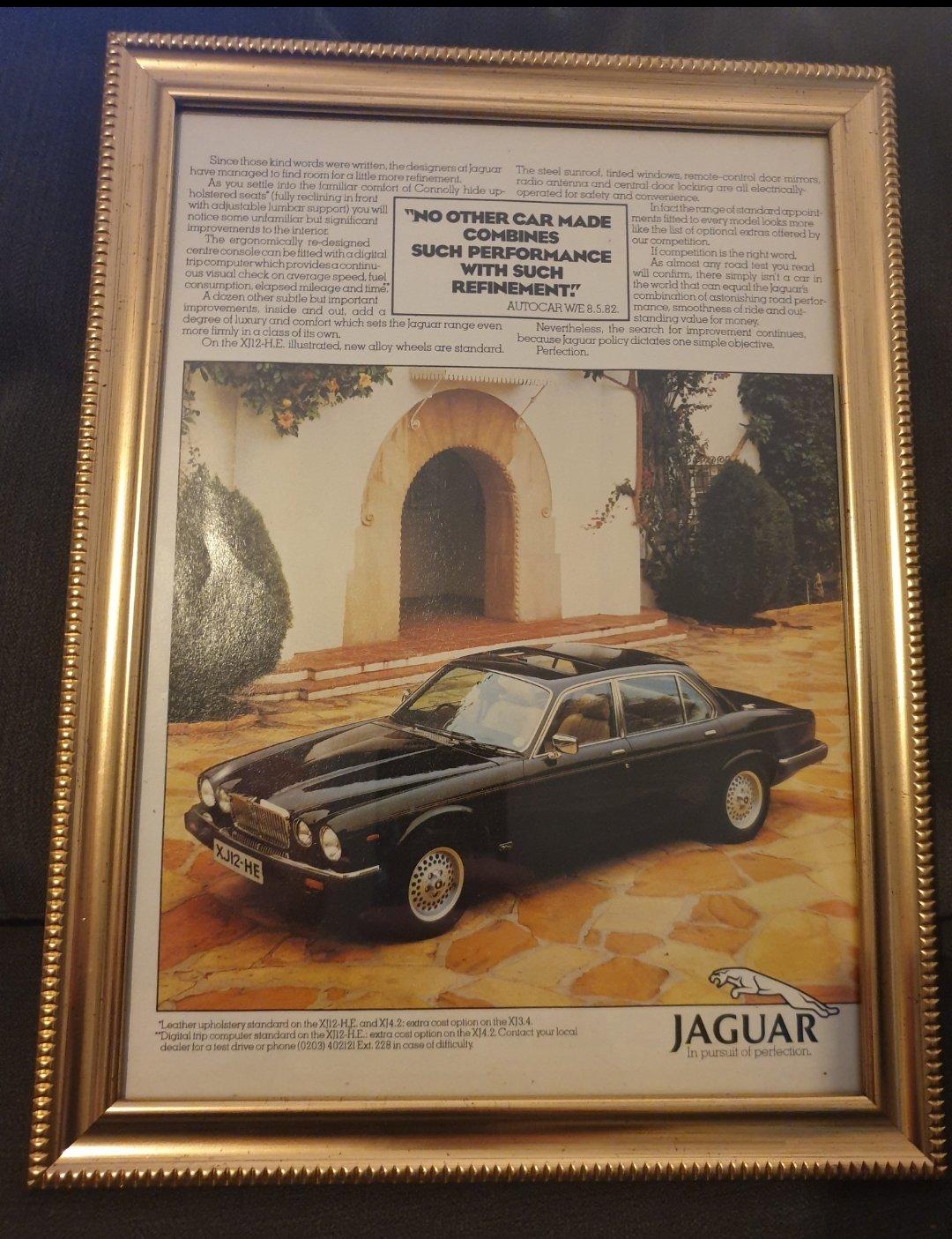 1982 Original Jaguar XJ12 advert For Sale (picture 1 of 2)