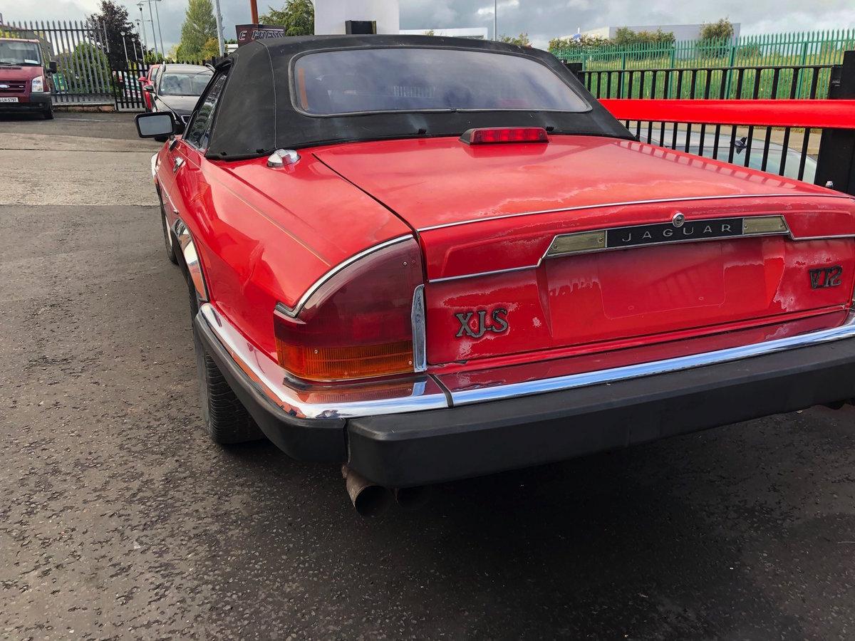Jaguar XJS V12 1990 For Sale (picture 2 of 6)