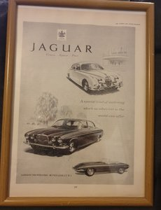 1963 Jaguar Advert Original
