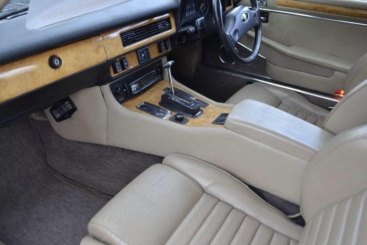 1989 Jaguar XJS - 3.6 For Sale (picture 11 of 15)