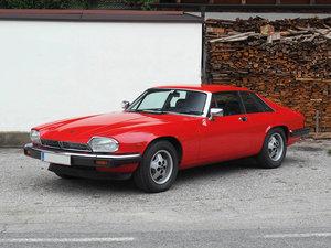 1981 Jaguar XJ-S V12 H. E. (ohne Limit/no reserve)