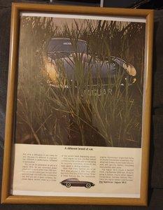 1964 E-Type Jaguar Advert Original