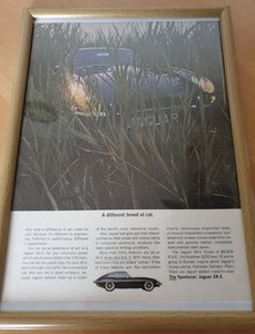 Original 1964 Jaguar E-Type Framed Advert