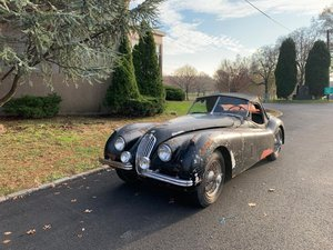 Picture of # 23136 1954 Jaguar XK120 Roadster  For Sale