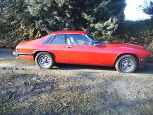1980 Jaguar XJS Pre HE V12