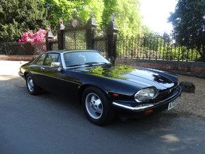 1984 JAGUAR XJS V12 HE *ONLY 42,000 MILES* For Sale