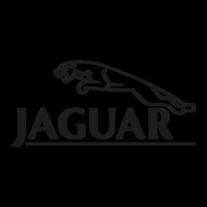 0042 Jaguar's Wanted