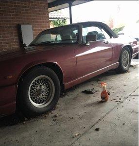 1989 Jaguar xjs 5.3 convertible project For Sale