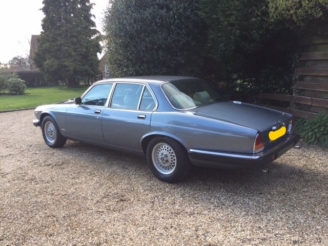 1986 Gorgeous XJ6 Series 3 Low Mileage For Sale (picture 6 of 6)