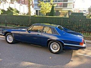 1989 Jaguar xjs, 49,000 kms, rhd, 4 year restoration