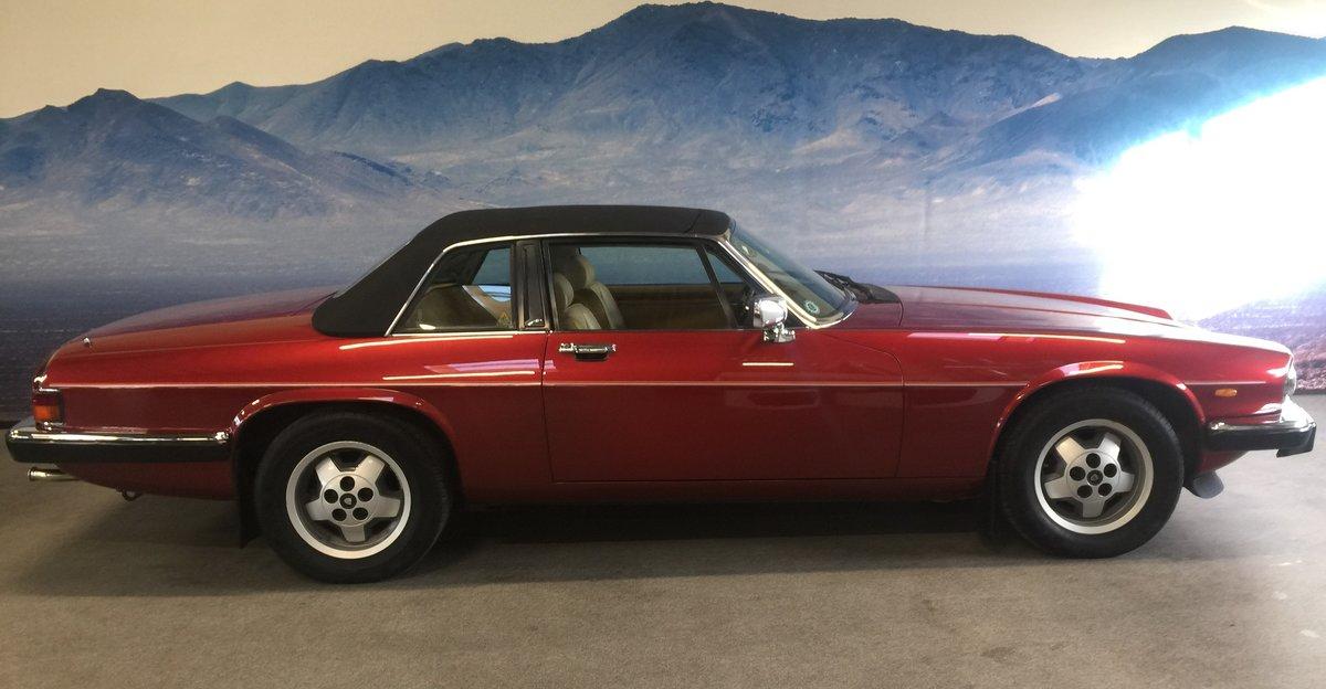 1986 Jaguar XJSC V12 'Targa'  For Sale (picture 2 of 6)