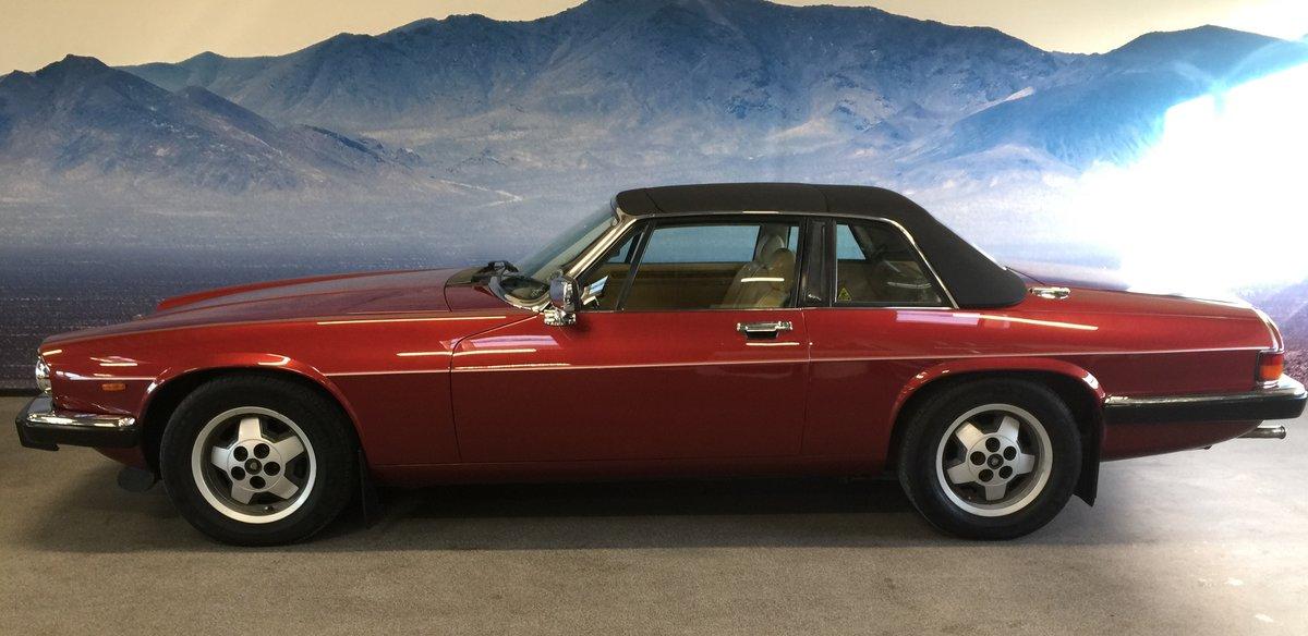 1986 Jaguar XJSC V12 'Targa'  For Sale (picture 5 of 6)