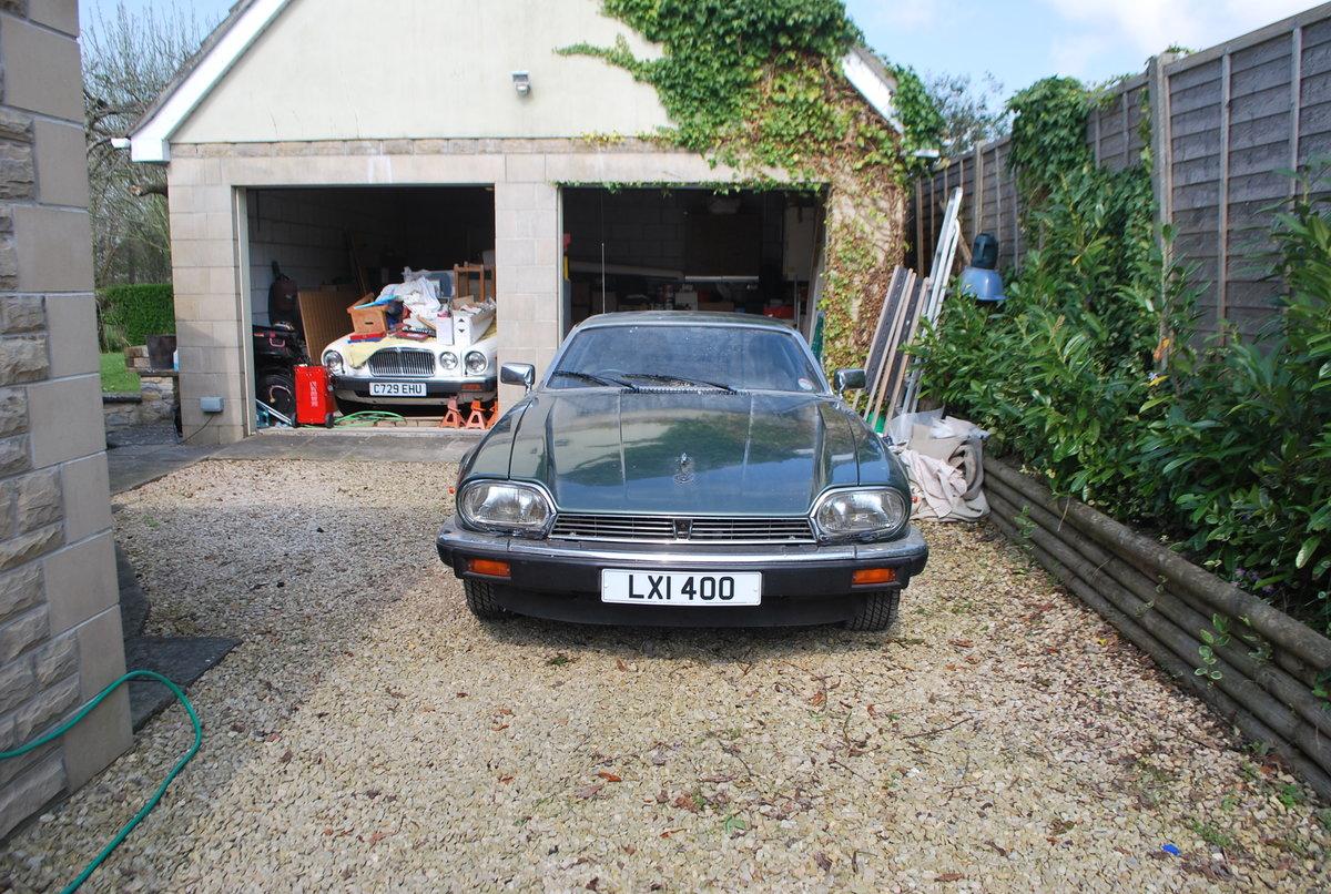 1985 Jaguar For Sale (picture 1 of 6)