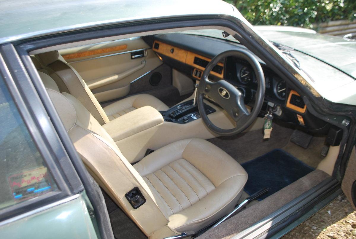 1985 Jaguar For Sale (picture 2 of 6)