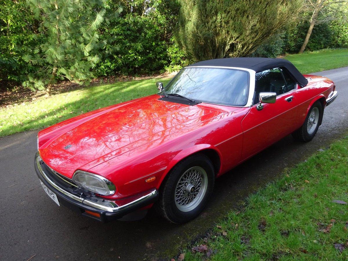 1988 Jaguar XJS V12 Cabriolet For Sale (picture 1 of 6)
