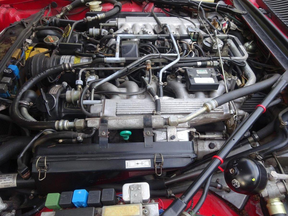 1988 Jaguar XJS V12 Cabriolet For Sale (picture 5 of 6)
