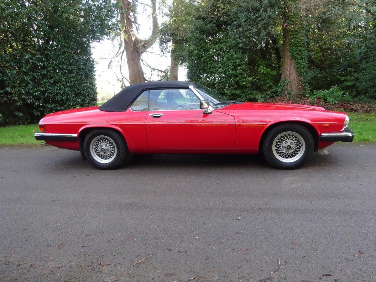 1988 Jaguar XJS V12 Cabriolet For Sale (picture 6 of 6)