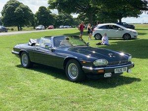 1989 Jaguar XJS convertible - Stunning