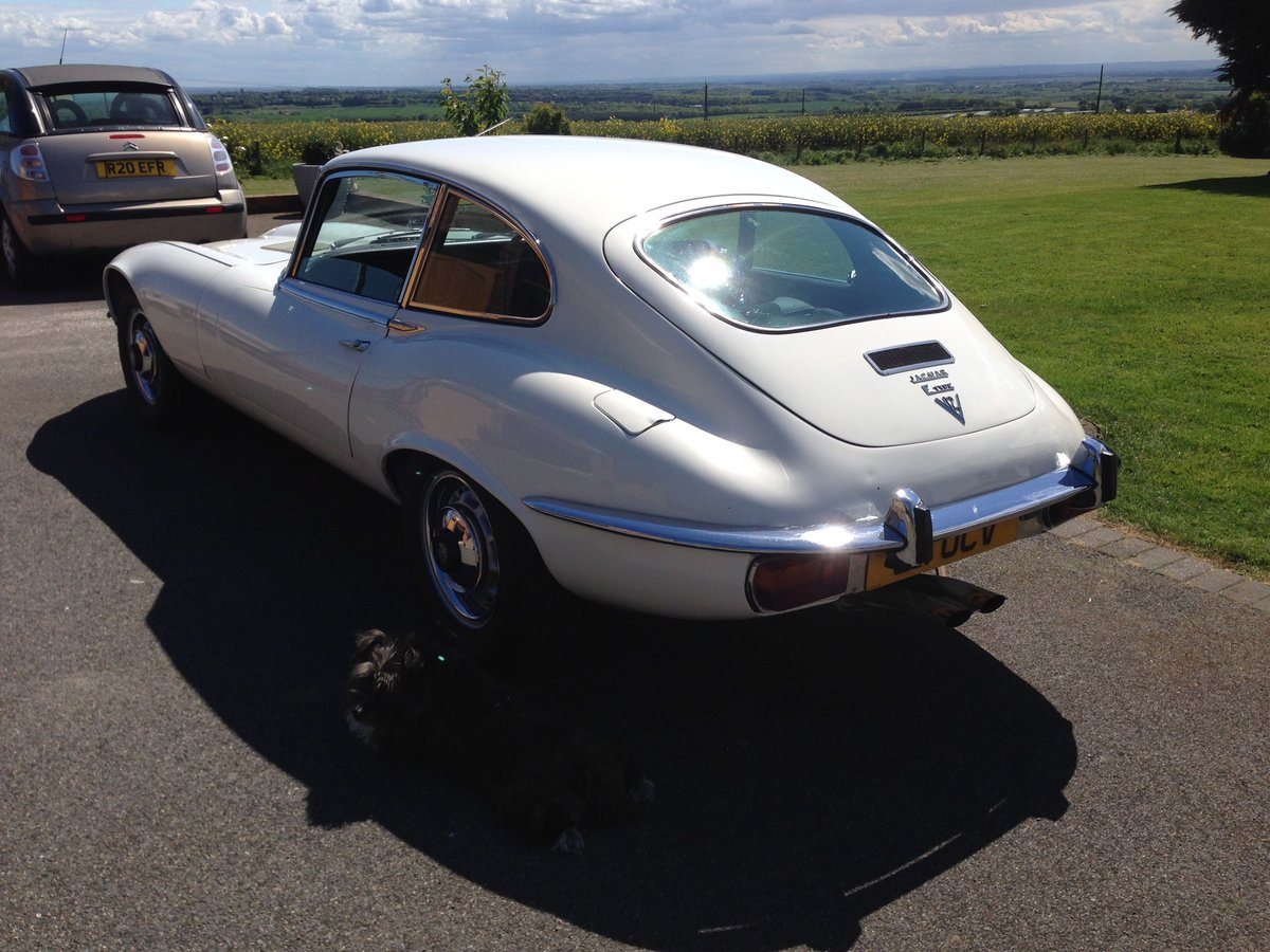 1971 Jaguar E Type Series 3 5.3 V12 For Sale (picture 3 of 6)