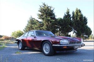 1989 Jaguar Xjs 3.6