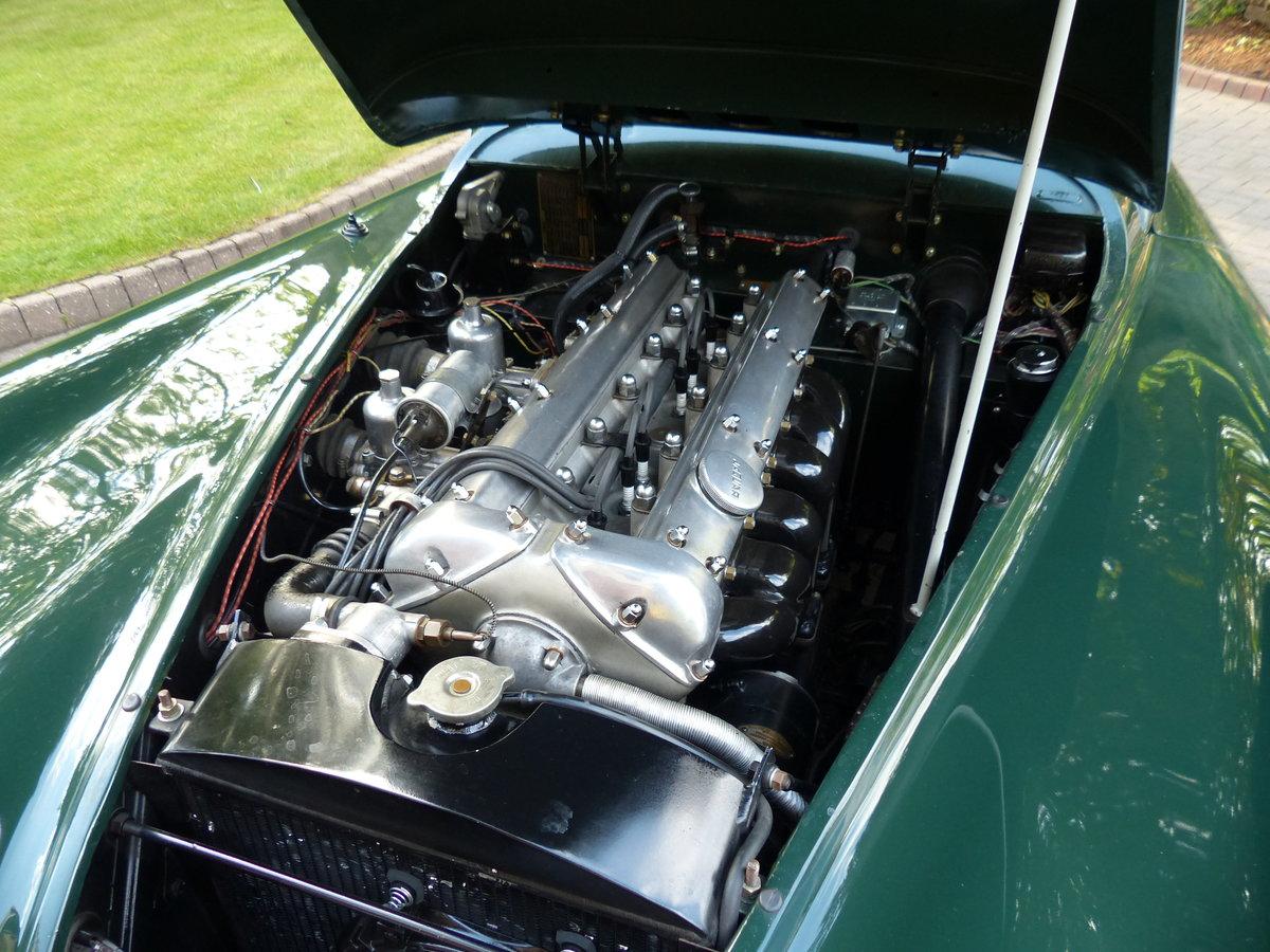 1953 Jaguar XK 120 Drop Head Coupe LHD For Sale (picture 6 of 6)