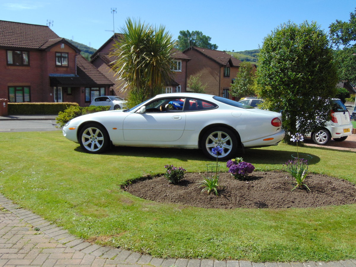 1997 Unique opportunity to purchase a rare white xk8 For Sale (picture 5 of 6)