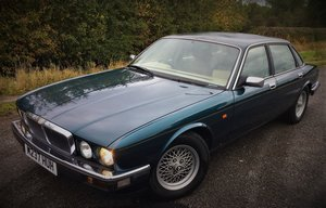 Picture of 1994 Rare XJ40/XJ6 Gold Edition