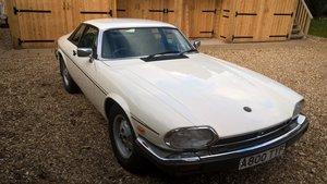 Picture of 1983 Jaguar XJS 5.3 V12 HE white