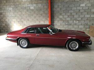Picture of 1989 Jaguar XJS V12 HE Auto