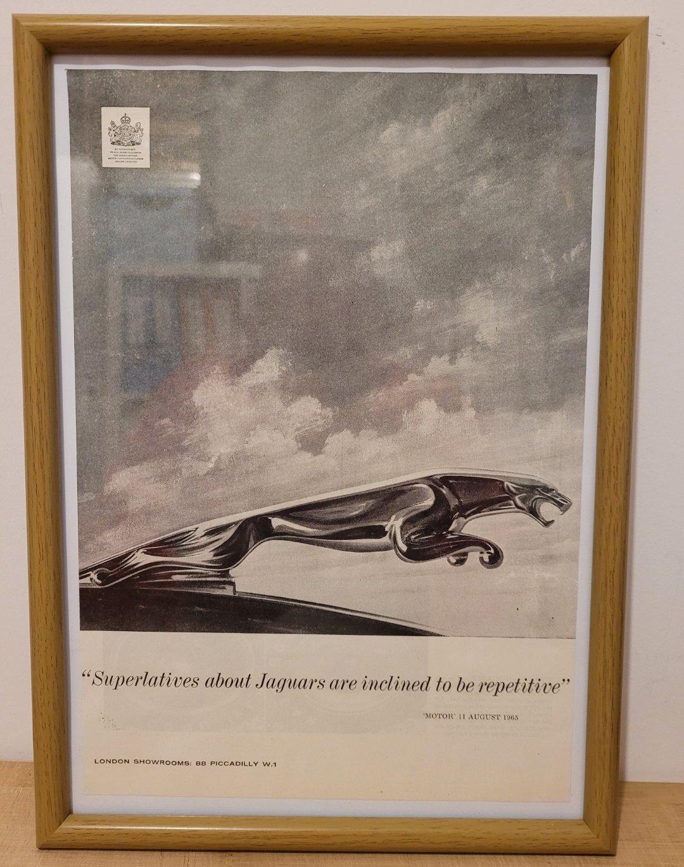 Picture of 1964 Original 1965 Jaguar Framed Advert For Sale