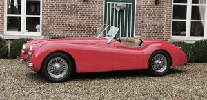 Picture of 1954 Jaguar XK 12O For Sale
