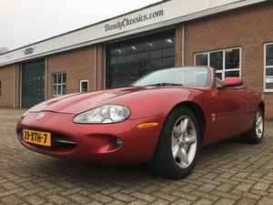 Picture of 1997 Jaguar XK8 convertible For Sale