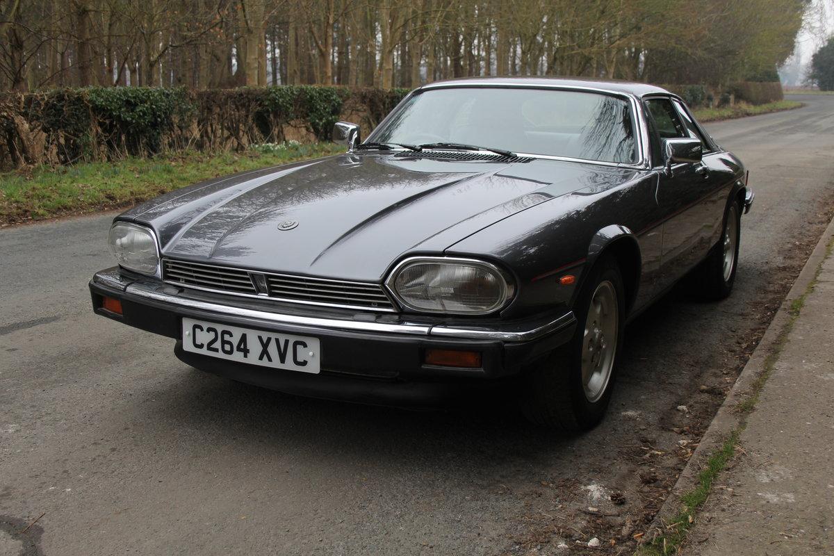 1986 Jaguar XJS 3.6 Manual - Ex Factory promotion car For Sale (picture 3 of 18)