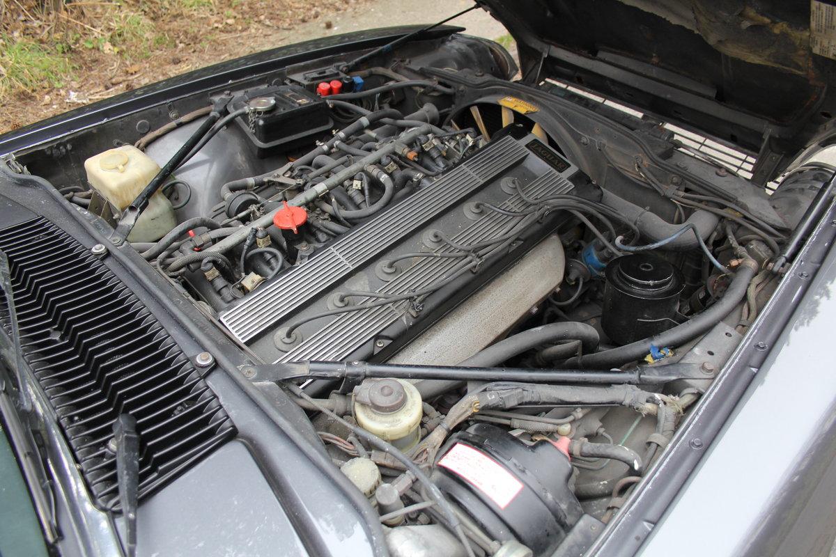 1986 Jaguar XJS 3.6 Manual - Ex Factory promotion car For Sale (picture 15 of 18)