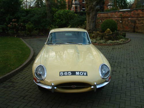 1964 Jaguar 3.8 FHC RHD UK CAR Multi Concours For Sale (picture 3 of 6)