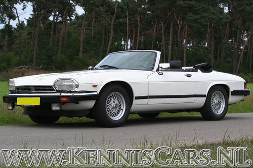 Jaguar 1989 XJS V12 5.3 Convertible For Sale (picture 3 of 6)