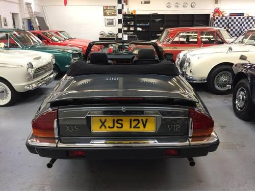 1989 Jaguar XJS V12 Convertible For Sale (picture 2 of 6)