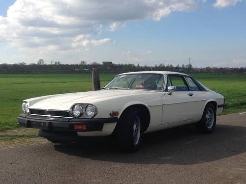 Jaguar XJS V12 5.3 Coupe  39k Miles !!(1976) For Sale (picture 2 of 6)