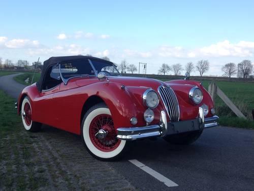 1955 Jaguar XK 140 SE SOLD (picture 3 of 6)