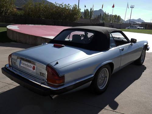 1990 Jaguar XJS Convertible 5.3 V12 For Sale (picture 2 of 6)