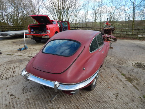 1969 Jaguar E Type 2+2 For Sale (picture 3 of 6)