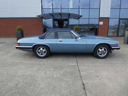 1984 Jaguar XJS-C Burberry Special Edition For Sale (picture 3 of 6)