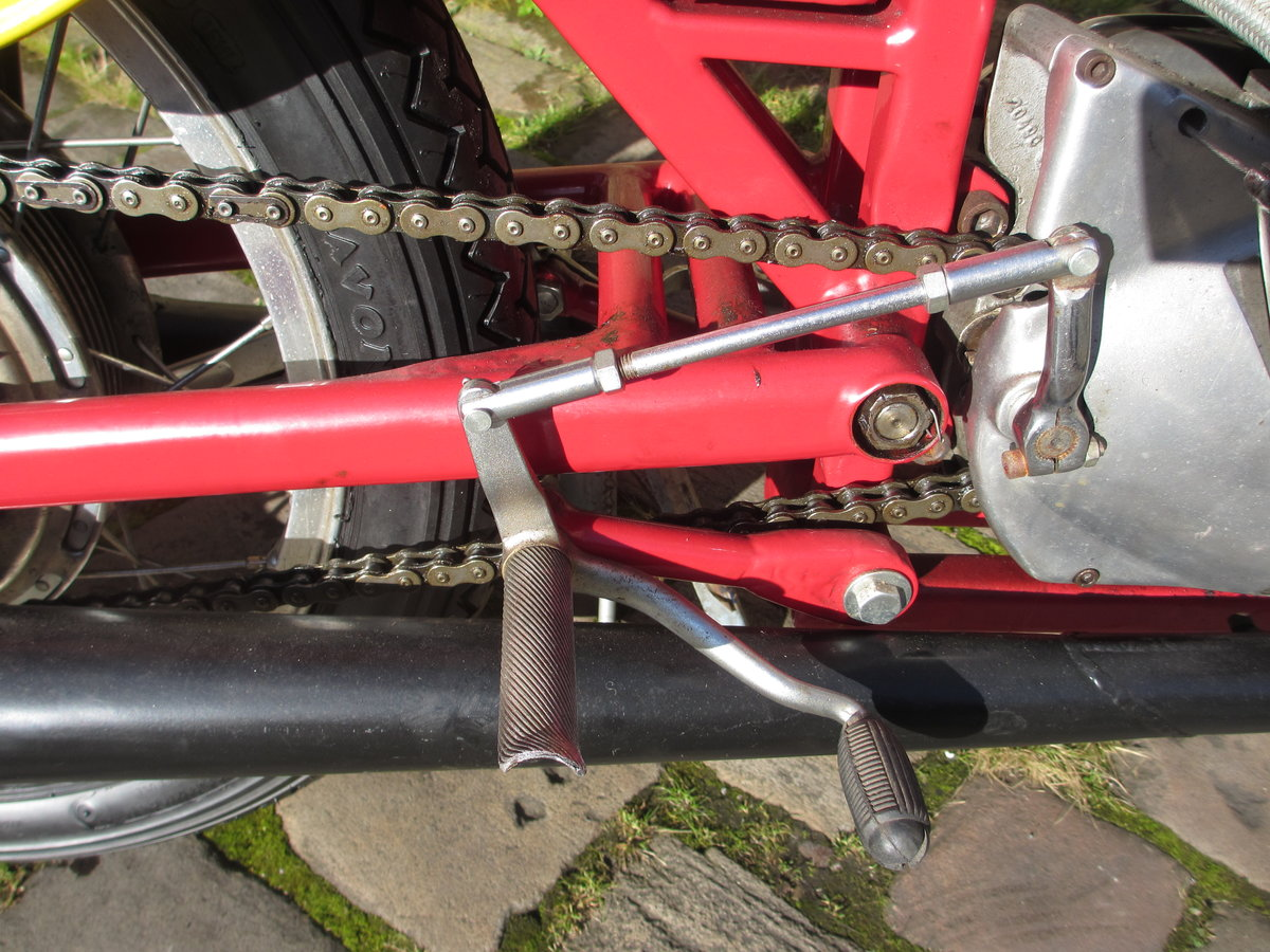 1957 Classic Jawa GP bike For Sale (picture 6 of 6)