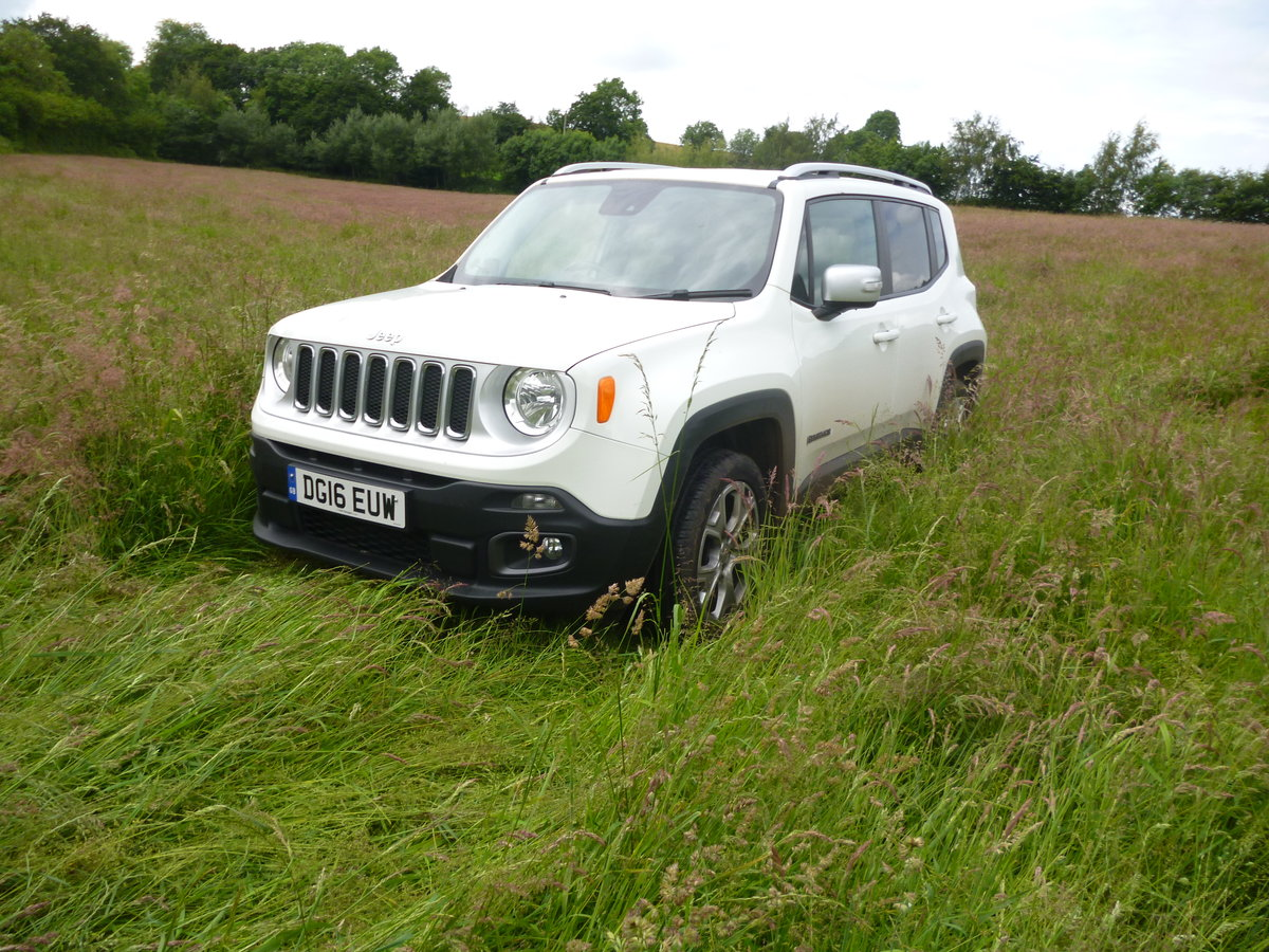 2016 Jeep Renegade Auto Navigation 4 WD Diesel For Sale (picture 3 of 6)